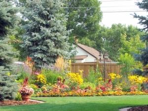 A Back Yard Garden