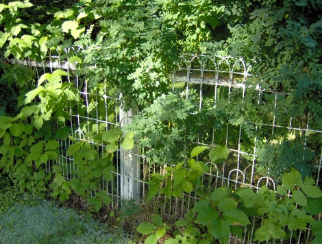 Wire fences were popular in the early decades of the 20th century