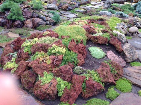 One of the lava rock gardens